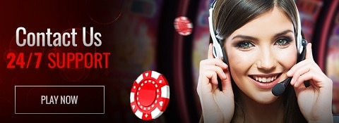 Playamo Casino support - live chat, email, FAQ