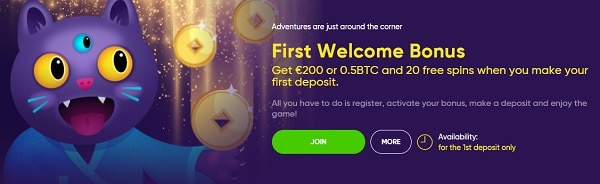 Make a deposit and bet 100% bonus and 20 free spins